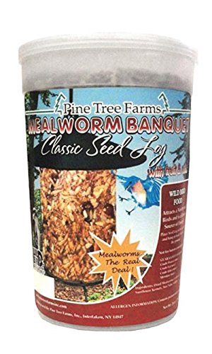 Case Pack of Pine Tree Farms Mealworm Banquet Seed Logs, 1.75 lbs. each by Pine Tree Farms