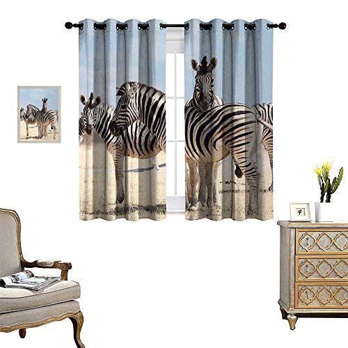 Anyangeight Wildlife Window Curtain Drape Three Zebras in Namibia National Park Africa Savannah Safari Theme Decorative Curtains for Living Room W55 x L72 Light Blue Black Beige