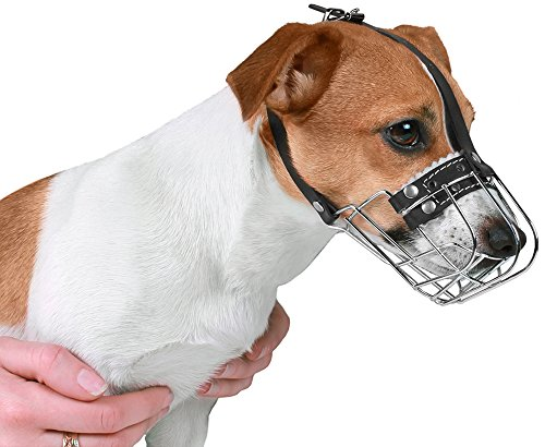 BronzeDog Wire Basket Dog Muzzle Jack Russell Terrier Metal Leather Adjustable Puppy Small (XS)