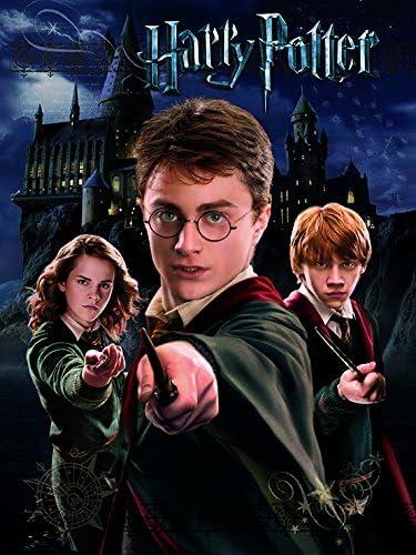Pyramid International Harry Potter - Canvas Harry Ron ...
