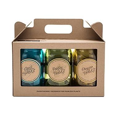 Italian Herb Kit – Three Self-watering Indoor Planters with Organic Basil, Organic Parsley, and Non-gmo Oregano Seeds.