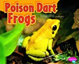 Poison Dart Frogs, Cecilia Pinto McCarthy, 1429660503