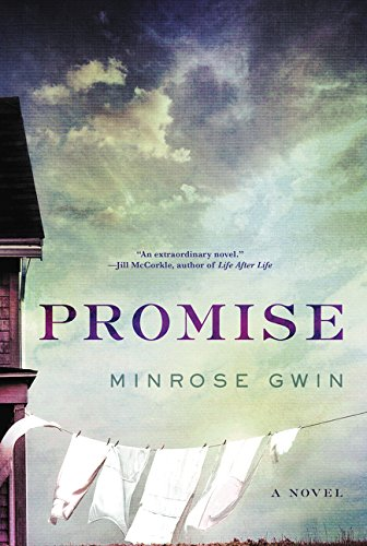 Read Online Promise: A Novel ebook