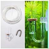 BASE WAVE Mini Transparent CO2 Diffuser Kit for
