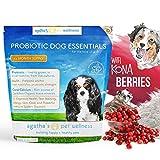 Agatha's Pet Wellness Probiotic Powder Dog Essentials – 9 Probiotic Strains – Improved Digestion – Total Organ Protection – Skin & Fur Health – 45 Billion CFU Per Serving – 5-Month Supply