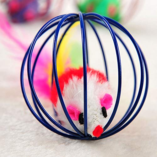 Amazon.com : Best Quality cat Playing Mouse Rat mice Ball cage Toys for pet cat Kitten Play Toy : Pet Supplies