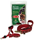 Gentle Leader Deluxe Head Collar and Leash, Small, My Little Angel/Red, My Pet Supplies