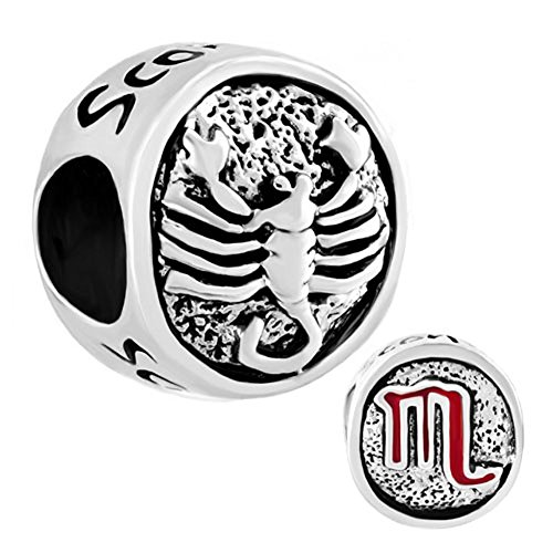 Lucky Horoscope Zodiac Symbol Charm