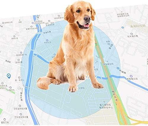 リアルタイムで2020年のミニモデルはトラッカーペットのGPS、IP68防水GPSの活動は、黒猫犬タグネックレスを監視し、大きな,白い