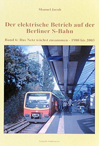 Band 6, Das Netz wächst zusammen – 1980 bis 2003