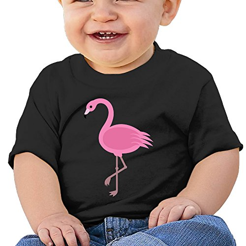 Price comparison product image Boxer98 Baby's T Shirt For Girls&Boys - Pink Flamingos Black 24 Months