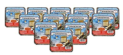 12 Pack Pine Tree Farms Hi-Energy Suet Cake Wild Bird Food 12 oz.