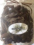 Birch Cones Tiny Pine Cone Fall Winter Holiday Traditional to Farmhouse Home Decor Vase Bowl Filler Displays Potpourri Crafts Table Scatters 8 oz Bag Apprx 350 Cones .75-1.25 inches Long