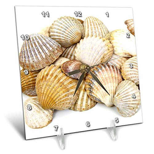 - 3dRose dc_50550_1 Sea Shells by The Sea Shore Summer Beach Theme Desk Clock, 6 by 6