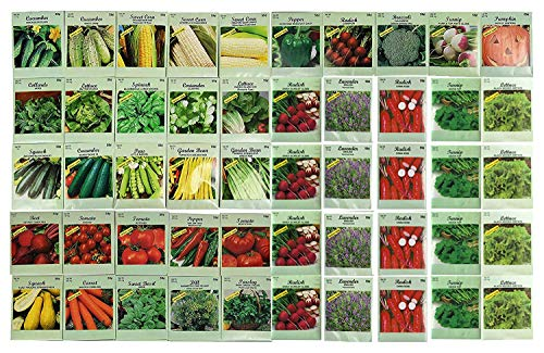 1000 Packs Assorted Heirloom Vegetable Seeds 30+ Varieties All Seeds are Heirloom, 100% Non-GMO Tens of Thousands Seeds (1000 Vegetable Seeds) by Black Duck Brand (Image #1)
