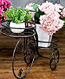Bicycle Potted Frame Iron Creative Flower Frame Balcony Living Room Floor Style Flower Stand ( Color : Bronze )