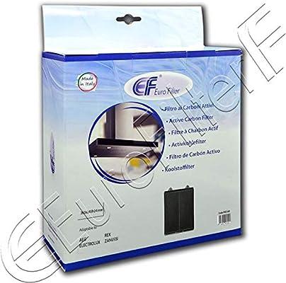 Euro Filter - Filtro para campana extractora de carbón activo, medidas 260 x 245 x 24 mm de altura, Bosch Siemens Electrolux Fim 55046249 Eurofilter FKS149: Amazon.es: Grandes electrodomésticos