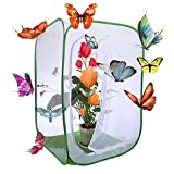Petforu 35 inches Tall Butterfly House Collapsible Insect and Butterfly Habitat Cage Terrarium Pop-up Open (Large)