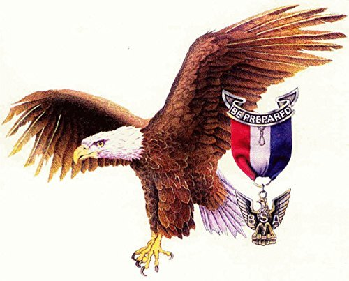 1/4 Eagles (American Eagle Scout Edible Cake Topper Frosting 1/4 Sheet Birthday Party)