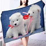 Quick dry bath towel Cute puppies of Samoyed dog playing with each other's ribbons Absorbent Ideal for everyday use L55.1 x W27.5 INCH