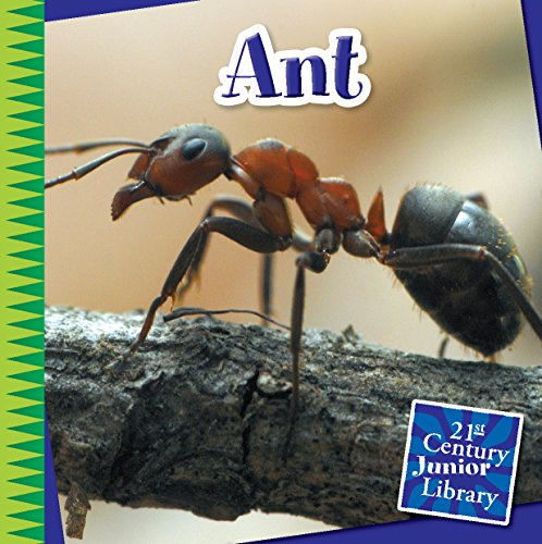Ant (21st Century Junior Library: Creepy Crawly Critters) -