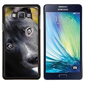 LECELL--Funda protectora / Cubierta / Piel For Samsung Galaxy A7 A7000 -- Pit Bull Terrier Cachorro Negro Perro Ojos --