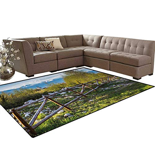 - Farmland,Floor Mat,Artsy Idyllic Scene with Tree Trunk Plank and Snow Mountain Range The Alps Photo,Anti-Skid Area Rug,Green Blue,6'x8'