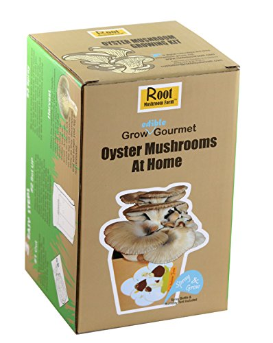 Root Mushroom Farm— Large Oyster Mushroom Growing Kit,Multiple flushes