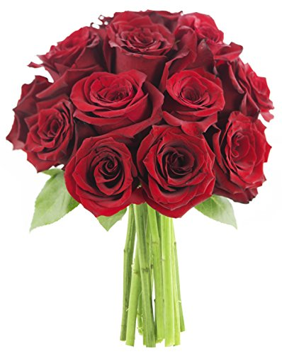 red-rose-of-passion-bouquet-one-dozen-long-stemmed-without-vase