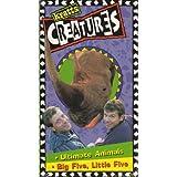Kratt's Creatures : Ultimate Animals Big Five, Little Five