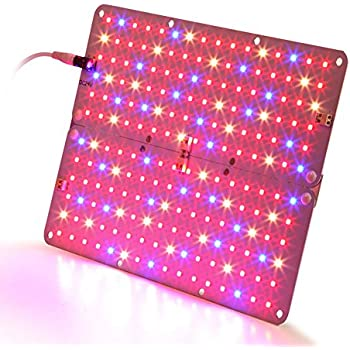 Amazon.com : Ledy Led Grow Light 3.2ft 5050 Waterproof