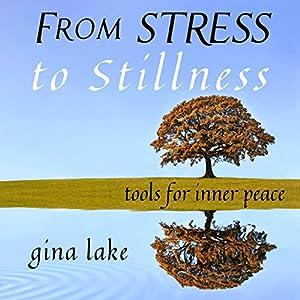 From Stress to Stillness Audiobook