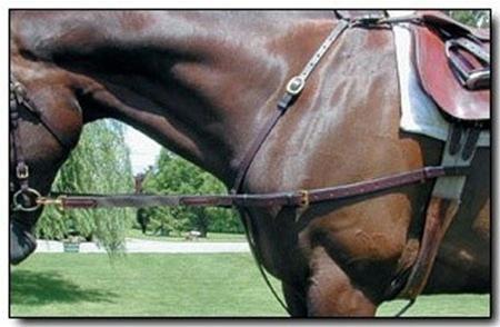 Nunn Finer Leather w/ Elastic Side Rein ()