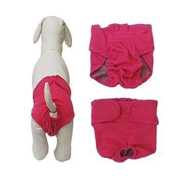 de la marca Ylen Pa/ñales reutilizables para perras de tama/ño mediano a grande