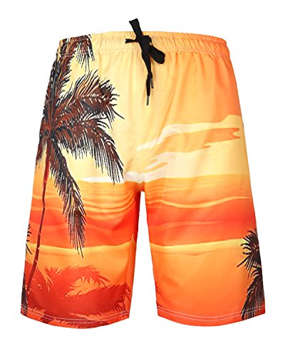 HONG DI HAO Mens Swim Trunks Quick Dry Swimming Trucks for Men Big and Tall Beach (Printed Swim Trunks)