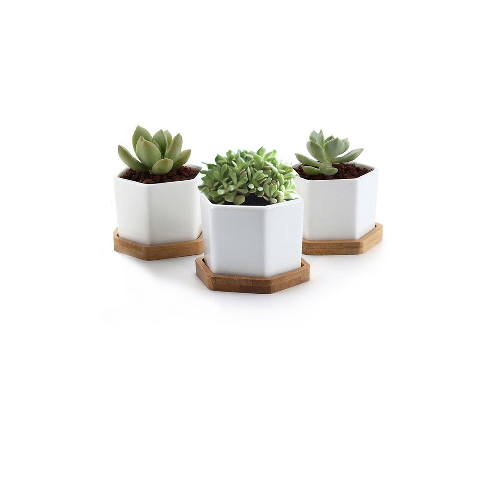 Y8HM Pack of 3 Mini Hexagonal White Ceramic Succulent Planter Pots/Small Flower Plant Containers with Bamboo Tray