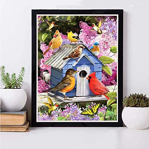 Diamond Art Kits for Adults Diamond Painting Flowers 5D Paint via Numbers Square Drills Cross Stitch Kits DIY Diamond Painting Birds for Kids Gem Art Drill and Dotz Wall Decor11.8×15.7Inch
