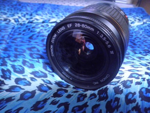 Canon EF28-80mm f/3.5-5.6 IV USM Standard Zoom Lens (Canon Zoom Lens Ef 28 80mm Ultrasonic)