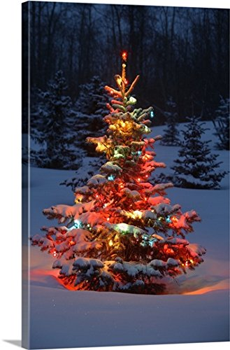 Carson Ganci Premium Thick-Wrap Canvas Wall Art Print entitled Christmas Tree With Lights Outdoors In The Forest by Canvas on Demand