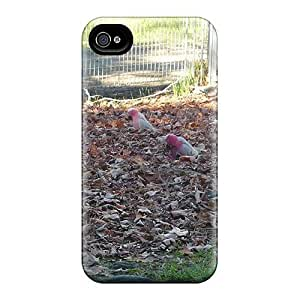 6 Scratch-proof Protection Cases Covers For Iphone/ Hot Galahs Feeding In Autumn Leaves Phone Cases