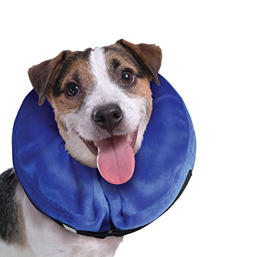 - KONG Cloud E-Collar for Cats and Dogs, Small