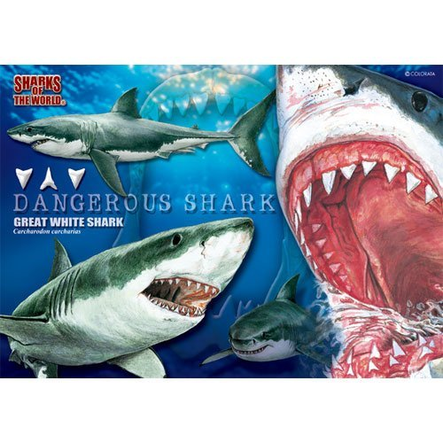 great-white-shark-real-b5-size-jigsaw-puzzle-330-piece-japan-import