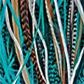 """5 Genuine 8""""-10"""" Turquoise,brown,white & Grizzly Feathers for Hair Extension"""