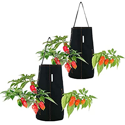 Pri Gardens Hanging Aeration Planter for Hot Peppers, Strawberries and Herbs   Eight Holes Per Planter