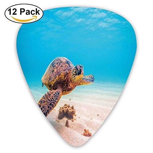 Newfood Ss Hawaiian Green Sea Turtle Cruises In Warm Waters Of The Pacific Ocean Photo Guitar Picks 12/Pack -