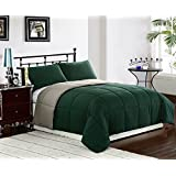 Cozy Beddings 3-Piece 102 by 90-Inch Reversible Down Alternative Comforter Set with Anti-Microbial Finish, King, Hunter Green/Sage
