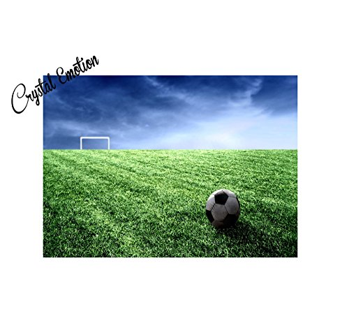 Free Scroll Background (Crystal Emotion Soccer Field Background With Ball doormat)