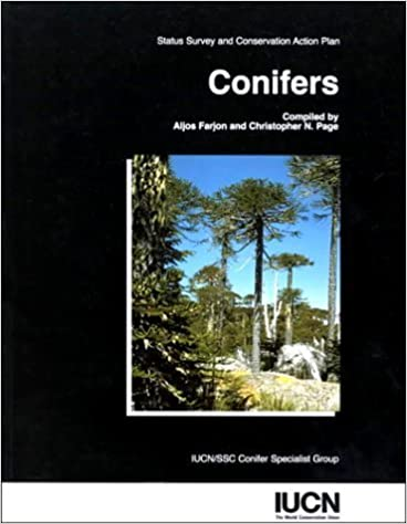 Conifers: Status Survey and Conservation Action Plan (Iucn/Ssc Action Plans for the Conservation of Biological Diversity) by IUCN/SSC Conifer Specialist Group (1998-01-01)