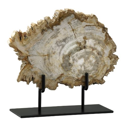 Cyan Design 02599 Petrified Wood On Stand, Medium