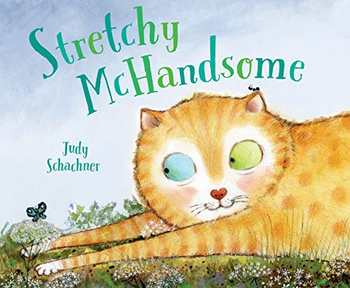 Book Cover: Stretchy McHandsome
